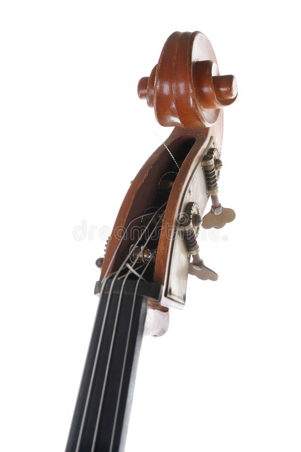 Headstock contrabass. Image headstock contrabass. Isolated on white background stock photo