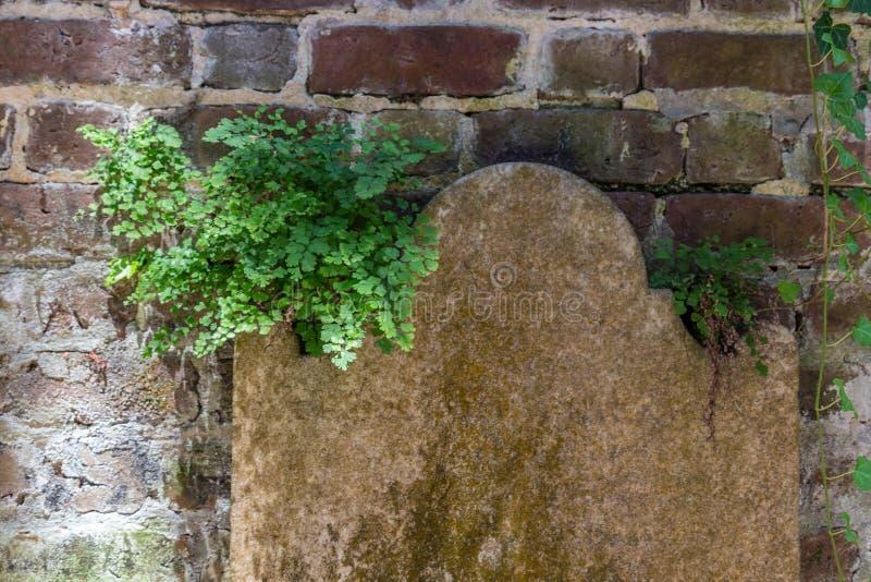 headstone fotografia de stock royalty free