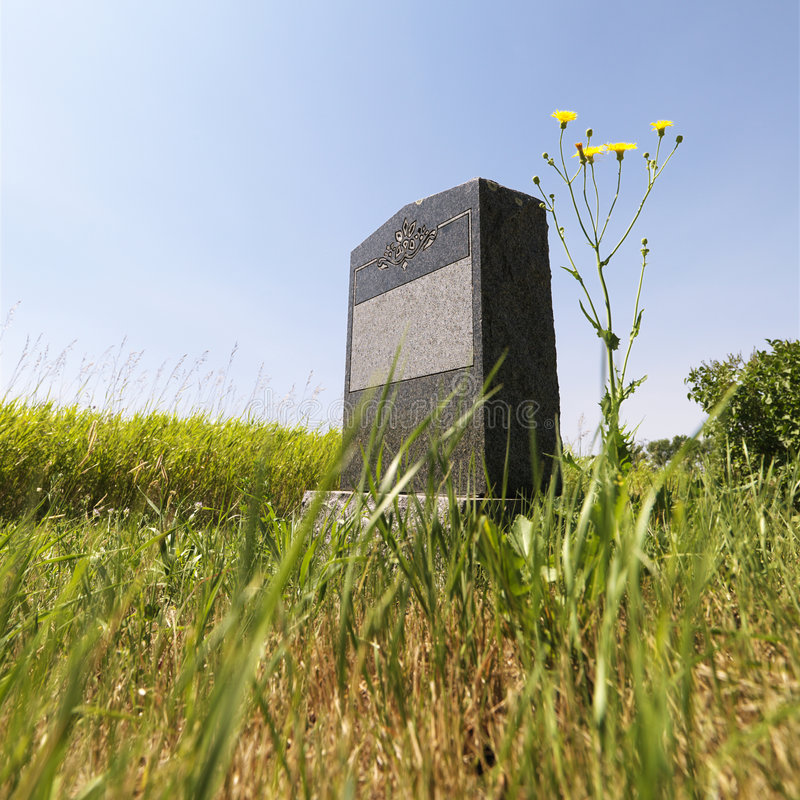 Download Headstone in field. stock image. Image of field, peace - 3187873