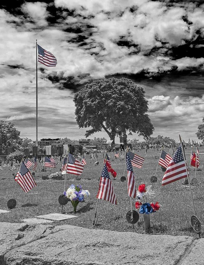 headstones кладбища сняли вертикальных ветеранов стоковое изображение rf