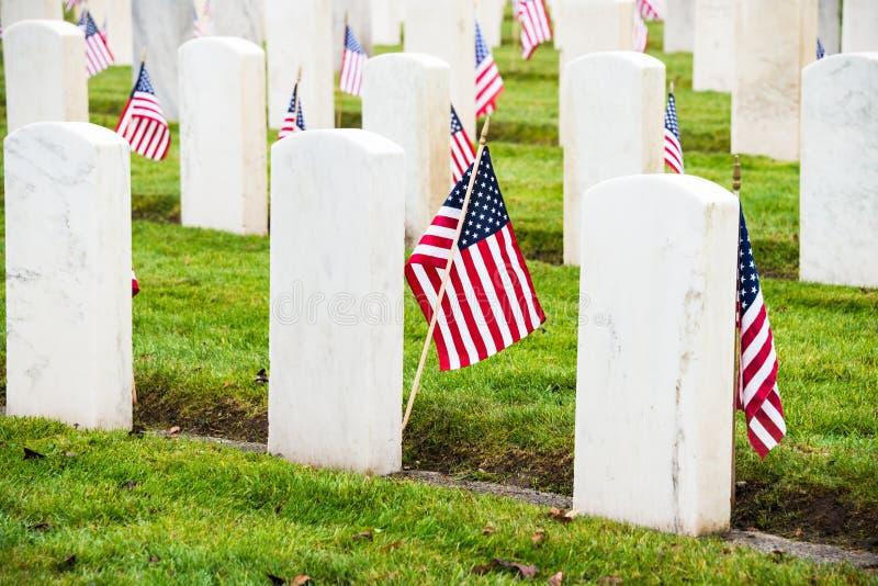 Headstones American Flags Veterans Cemetery Royalty Free