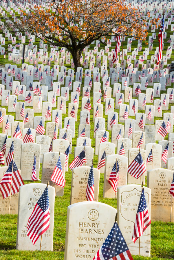 Free Headstones With American Flags In War Veterans Cemetery Stock Photography - 35155532
