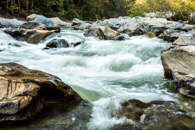 Headstream w Khan parka narodowego chaingmai Tajlandia obraz stock