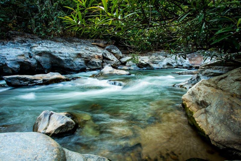 Headstream w Khan parka narodowego chaingmai Tajlandia obrazy stock