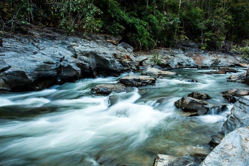 Headstream w Khan parka narodowego chaingmai Tajlandia zdjęcie stock