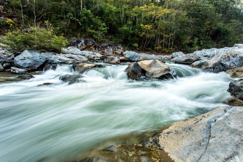Headstream w Khan parka narodowego chaingmai Tajlandia zdjęcia stock