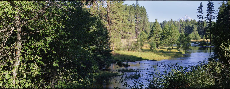headwaters ποταμός metolius στοκ φωτογραφία