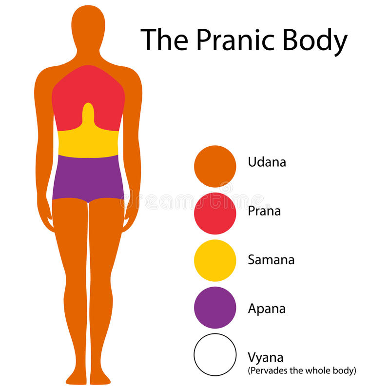 Healing energy. Vector illustration of healing body energy royalty free illustration