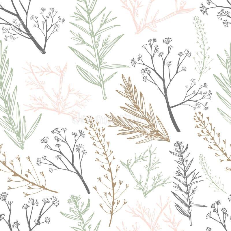 Botanical herbal seamless pattern. Healing field herb plants seamless background. royalty free illustration