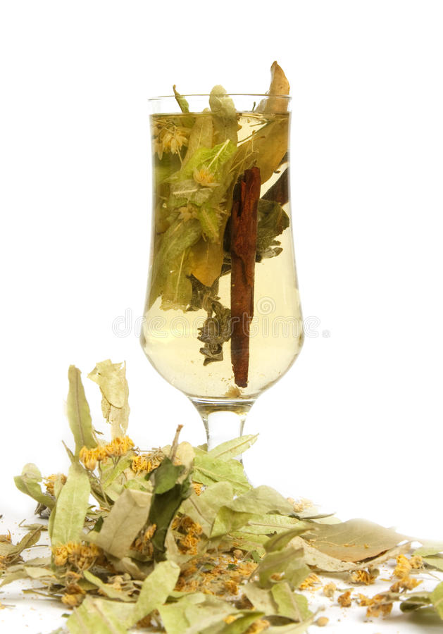 Healing herbal tea stock photo