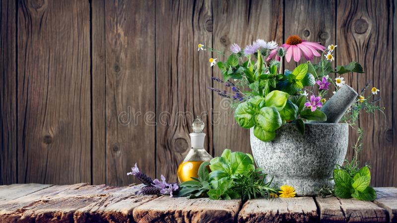 Download Healing Herbs And Essential Oil In Bottle With Mortar Stock Photo - Image of treatment, herbal: 113820396
