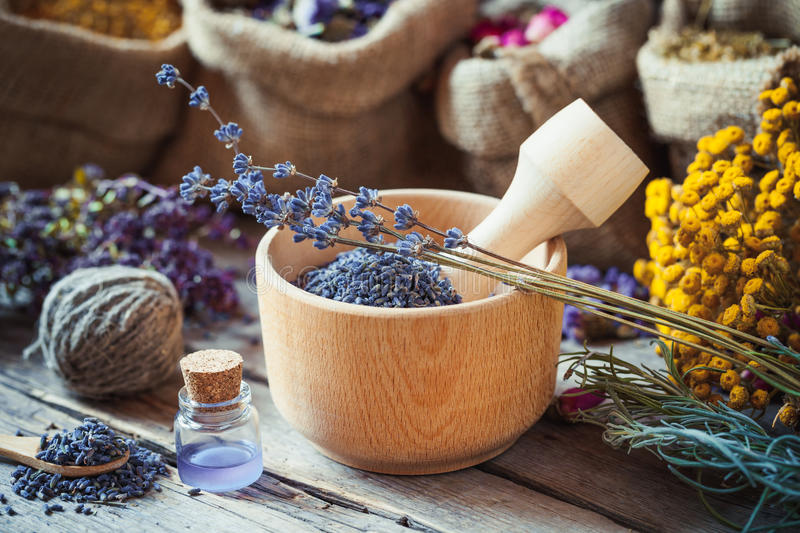 Healing herbs in hessian bags and mortar with lavender stock images