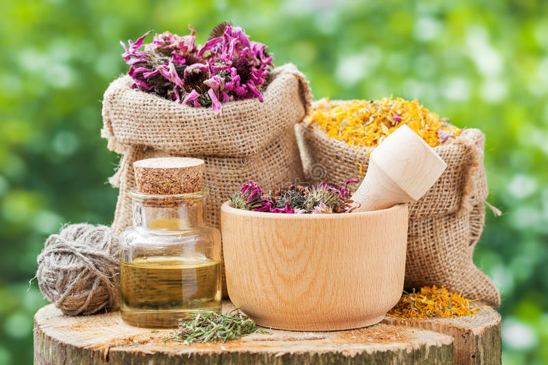 Healing herbs in hessian bags, wooden mortar with coneflowers. And essential oil on wooden stump outdoors, herbal medicine stock photography
