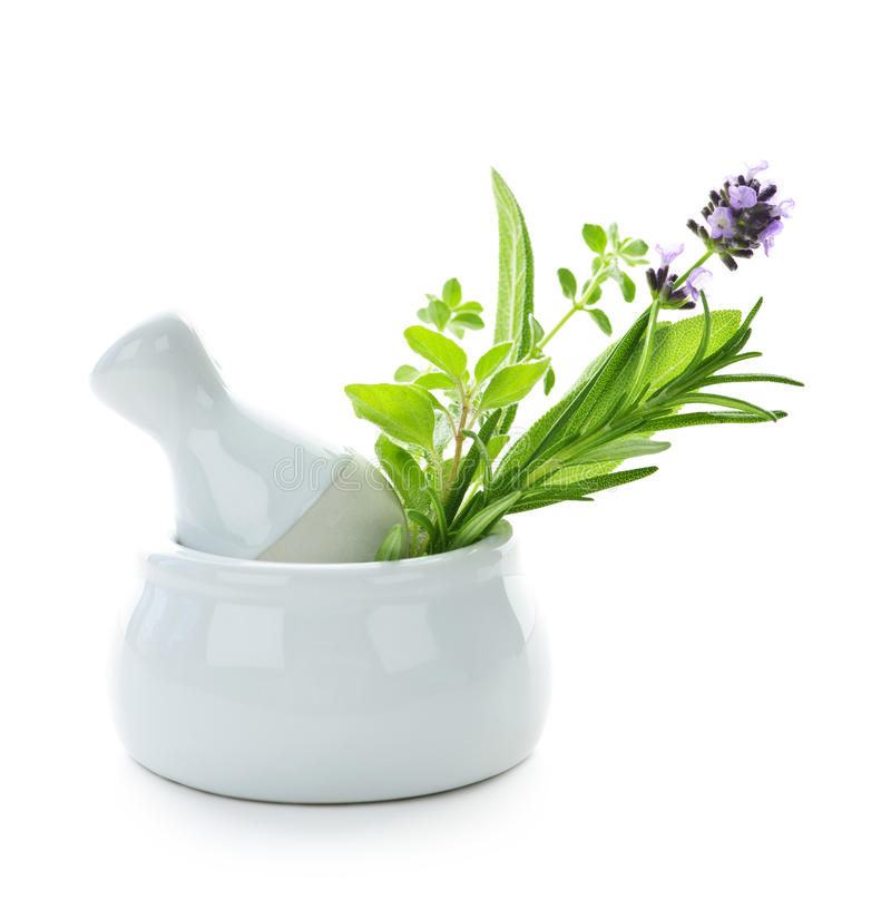 Free Healing Herbs In Mortar And Pestle Stock Photography - 14999902