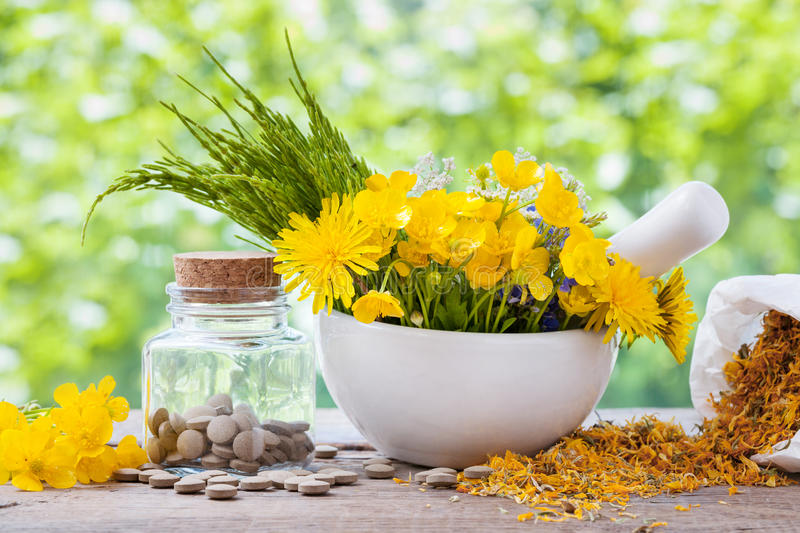 Healing herbs in mortar and bottle with pills. Healing herbs in mortar and bottle of pills on rustic table, herbal medicine stock images