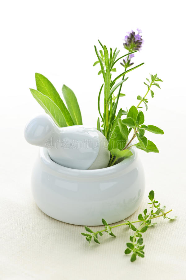 Download Healing Herbs In Mortar And Pestle Stock Photo - Image: 14999942