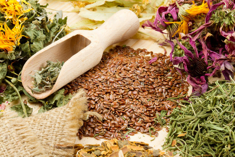 Healing herbs on wooden table, herbal medicine. Healing herbs with scoop on wooden table, herbal medicine royalty free stock photos