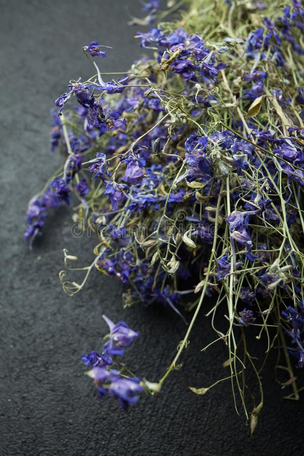 Healing medicinal herbs on a black background stock photo