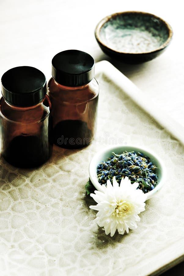 Free Healing Plants Royalty Free Stock Image - 3043966