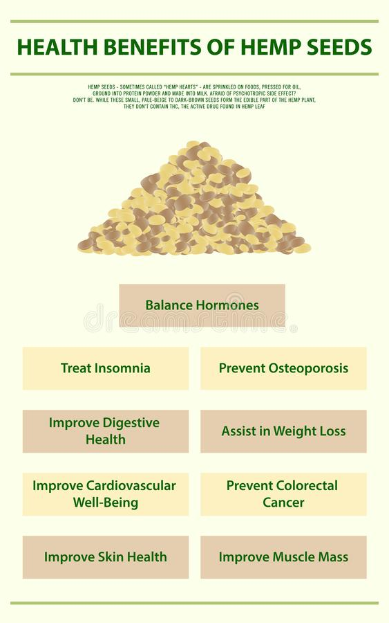 Health benefits of hemp seeds vertical infographic Complete royalty free stock images