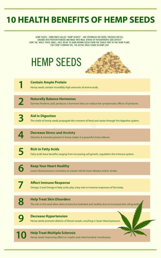 10 health benefits of hemp seeds vertical infographic stock illustration