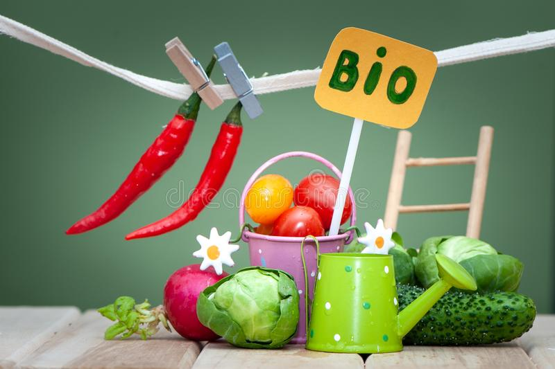 Health bio organic food concept. Stylish composition of small fruits and vegetables and garden. Accessories stock image