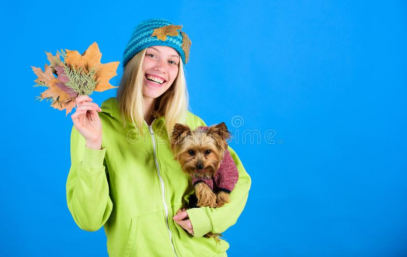Health care for dog pet. Pet health tips for autumn. regular flea treatment. Girl hug cute dog and hold fallen leaves. Veterinary medicine concept. Woman carry royalty free stock photography