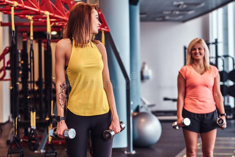 Health, diet, sport. Girl with her coach trains with dumbbells in the modern gym royalty free stock photo