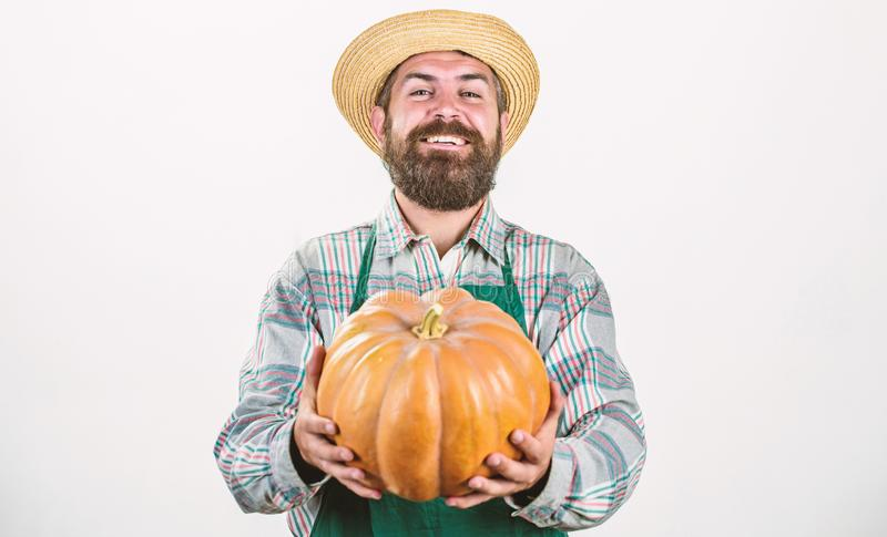 Health in his hands. harvest festival. useful vegetables. rich autumn crop. seasonal vitamin. organic food. happy. Halloween. healthy product. man with pumpkin stock photography