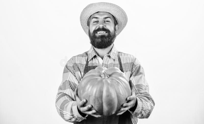 Health in his hands. harvest festival. useful vegetables. rich autumn crop. seasonal vitamin. organic food. happy. Halloween. healthy product. man with pumpkin royalty free stock photos