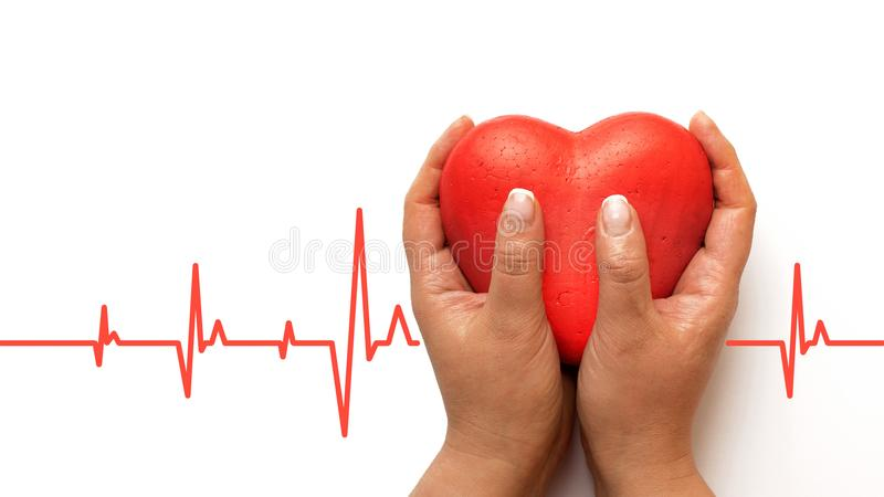 Health, medicine, people and cardiology concept - close up of hand with cardiogram on small red heart royalty free stock image