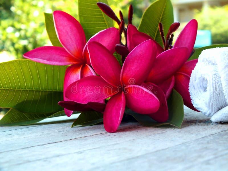 Health Spa Massagezaal stock foto