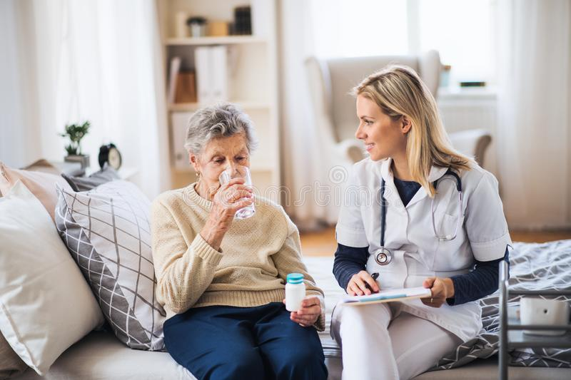 A health visitor and a senior woman at home, taking pills. royalty free stock image
