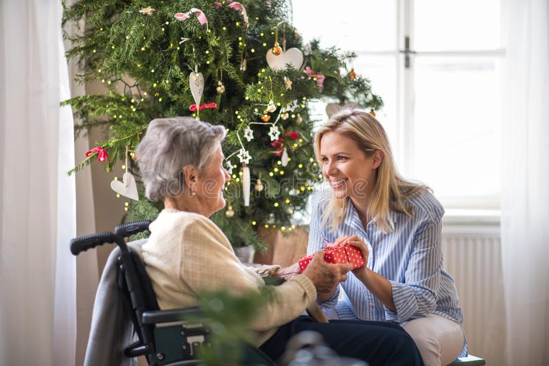 Health visitor and senior woman in wheelchair with a present at home at Christmas. royalty free stock images