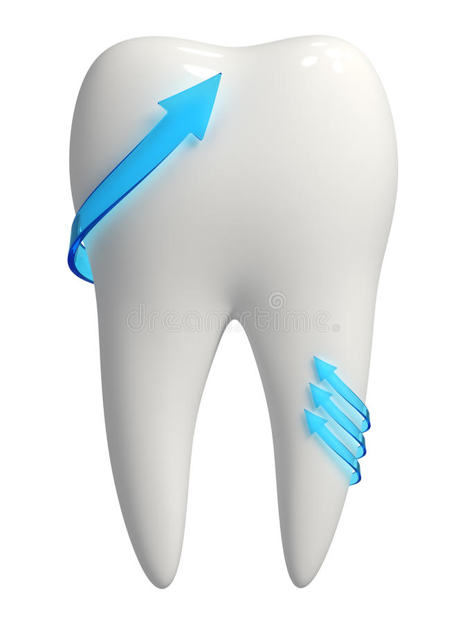 Healthy 3d white tooth icon - Blue arrows stock photo