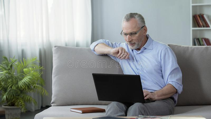 Healthy adult male sitting on sofa and viewing photos on dating website, laptop stock image