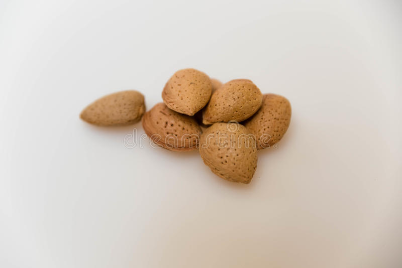 Healthy Almonds. A Few Healthy Almond drupes stock photography