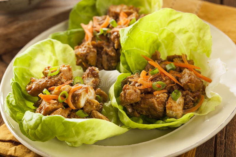 Download Healthy Asian Chicken Lettuce Wrap Stock Photo - Image: 39370966