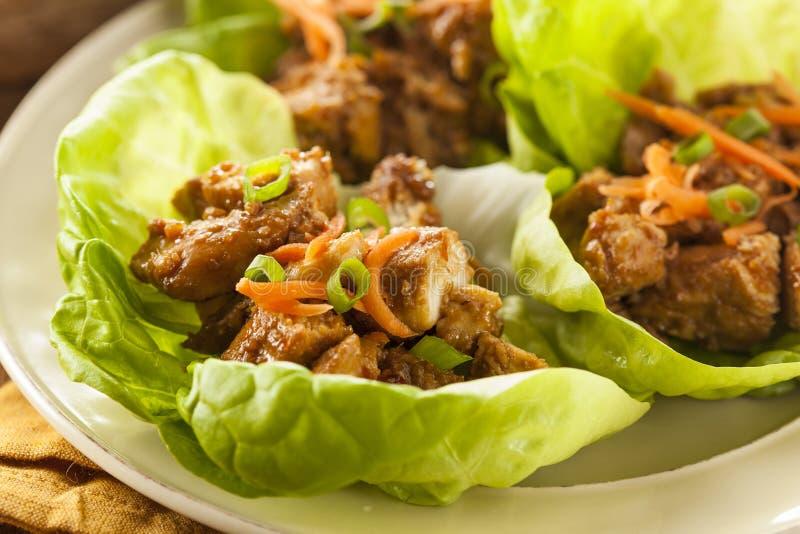 Healthy Asian Chicken Lettuce Wrap Stock Photo