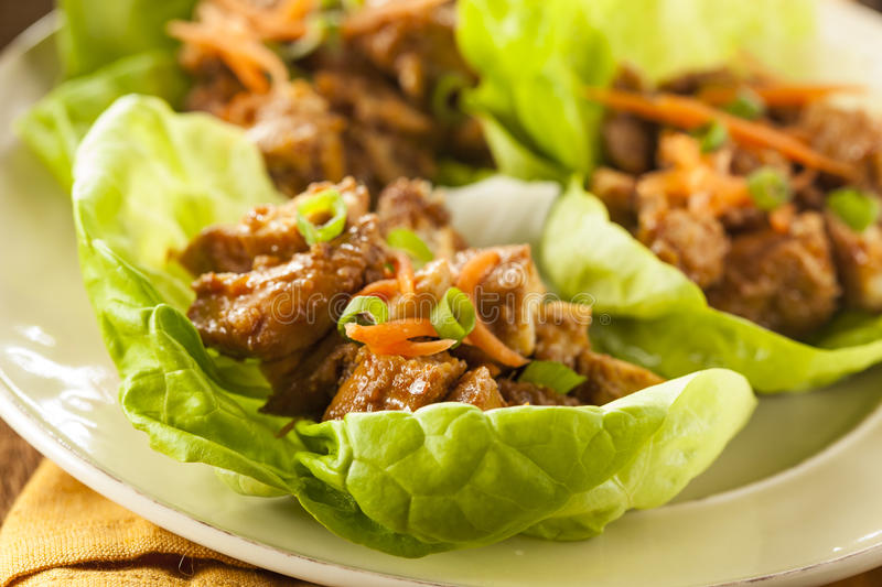 Download Healthy Asian Chicken Lettuce Wrap Stock Photo - Image: 39371030