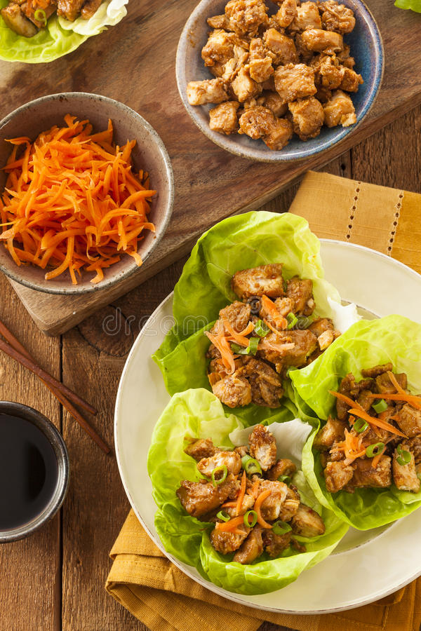 Download Healthy Asian Chicken Lettuce Wrap Stock Image - Image: 39371059