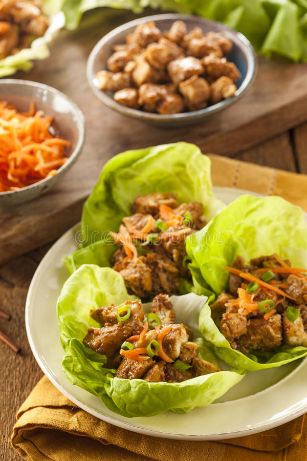 Download Healthy Asian Chicken Lettuce Wrap Stock Photo - Image: 39371232