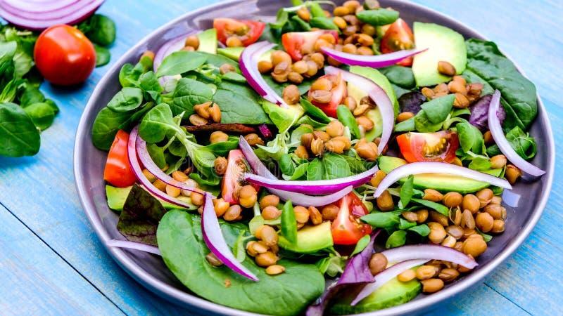 Healthy Avocado en Lentil Salad stock foto's