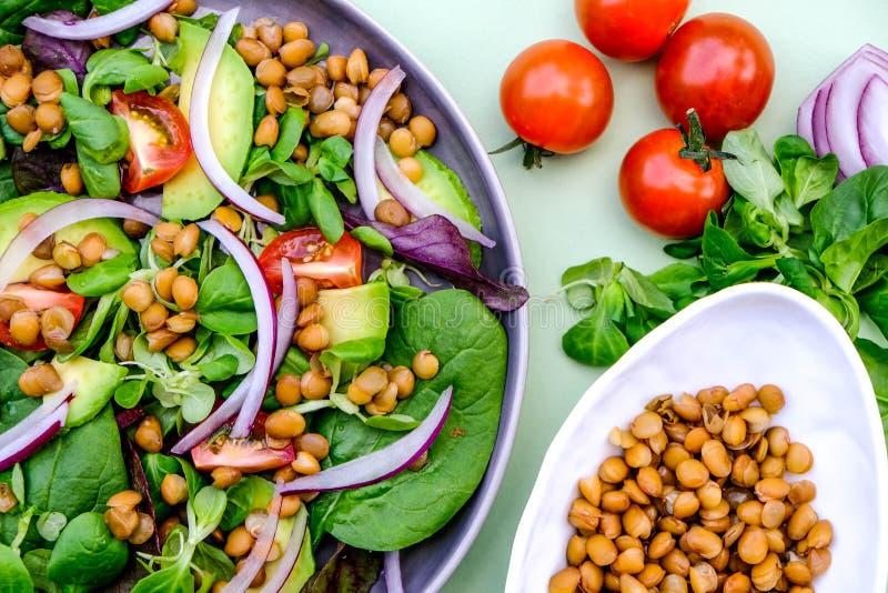 Healthy Avocado en Lentil Salad stock fotografie