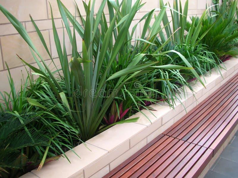 Healthy bench seat garden royalty free stock photos