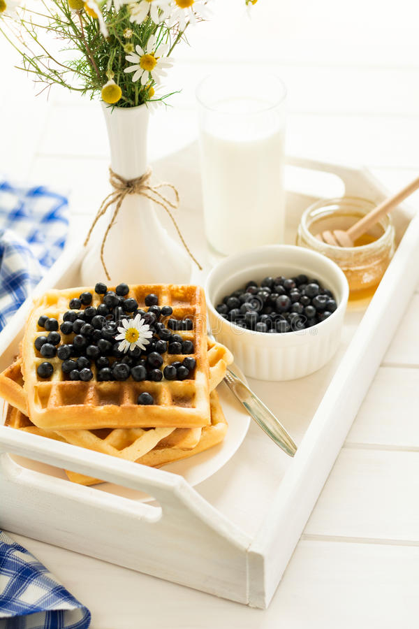 Healthy breakfast: Belgian waffles with blueberries, honey and milk decorated chamomile flowers on white wooden salver royalty free stock images