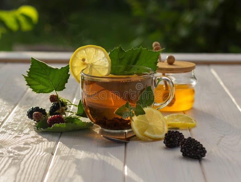 Healthy breakfast concept. Aromatic tea, blackberries, lemon slices and honey dipper. Black tea, lemons and honey on a white wooden table in the gardentable in royalty free stock images
