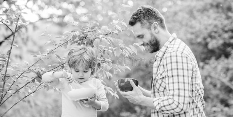 Healthy breakfast. Father son eat food. Little boy and dad eat. Nutrition kids and adults. Tasty porridge. Organic. Nutrition. Healthy nutrition concept stock photos