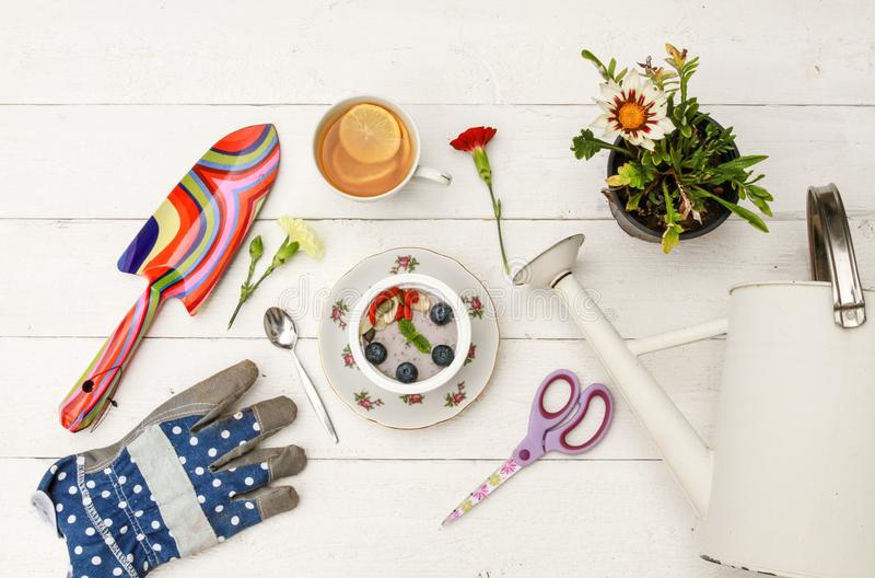 Healthy breakfast among gardening tools royalty free stock image