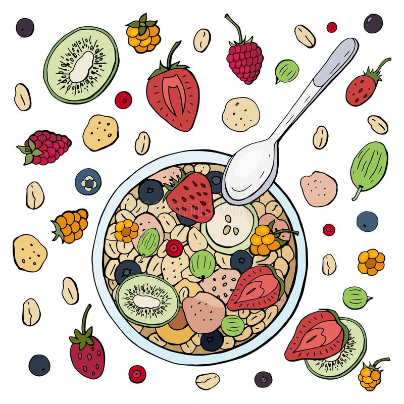 Healthy breakfast made from muesli with fruits and berries on a white plate. Oatmeal with fruit stock illustration